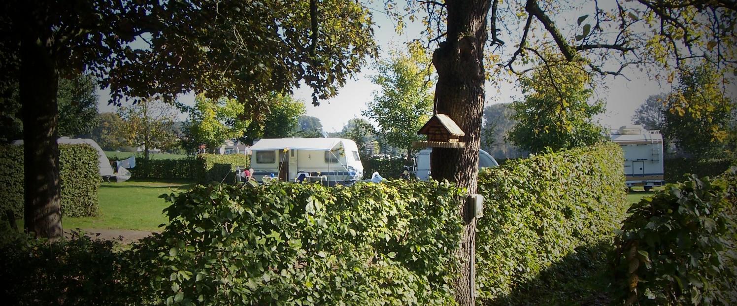 camping vogelhuisje