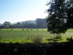 Groenendaal 26